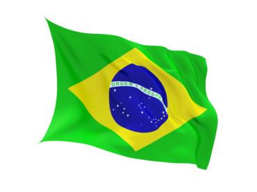 Стильный чемодан а-ля Brazil